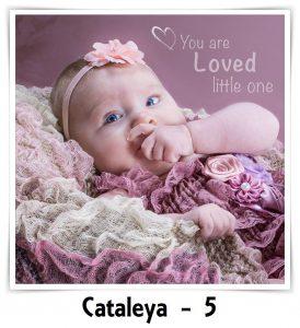 Cataleya 5 jaar