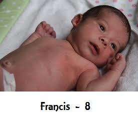 francis-8