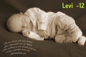 Levi 12 jaar