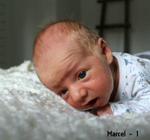 Marcel - 1 jaar